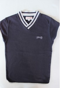 Tee-shirt bleu marine et blanc - Schott